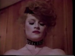 Lisa  De Leeuw - American Vintage Lesbo Threesome