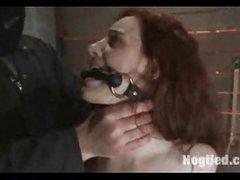 Bondage slaves hogtied & tortured