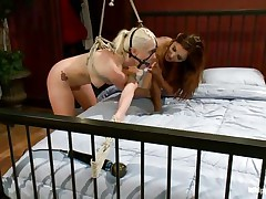 Look at that dominating brunette milf Francesca Le torturing the hell out of that hottie blonde Lorelei Lee. She is in bondage and her mouth gagged. The big tittied lady is making that blonde whore to please her through sucking her pussy and licking the clitoris as well! Who knows what awaits for her next!