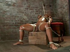 Tied Up adult tube movies