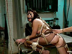 Coral aorta is a busty brunette hair milf who enjoys being aroused while she is tied up in bondage devices. She loves having her mouth gagged with a ball as her gorgeous domina takes advantage of her position. The hot golden-haired milf Lorelei Lee likes pleasuring her sex slave with a transparent butt plug.