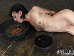 She has a bowl with water and one with food. Elise was a total bitch and now she's treated like one. Look at her how she struggles to eat and mostly of that food is on her face. What a dirty whore, she deserves more punishment for her manners. But first she needs some more humiliation, let's watch her play.